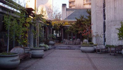 Courtyard View 2